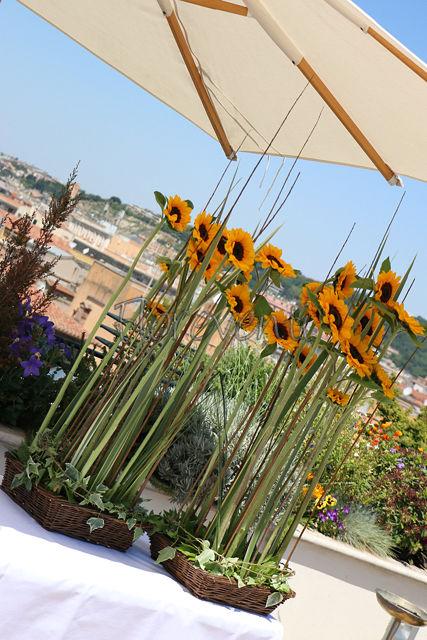 Roof Garden Les etoiles