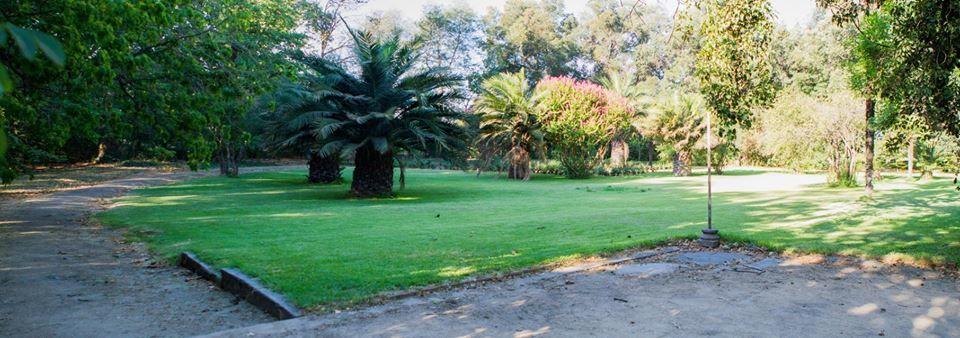 Eventos Las Acacias