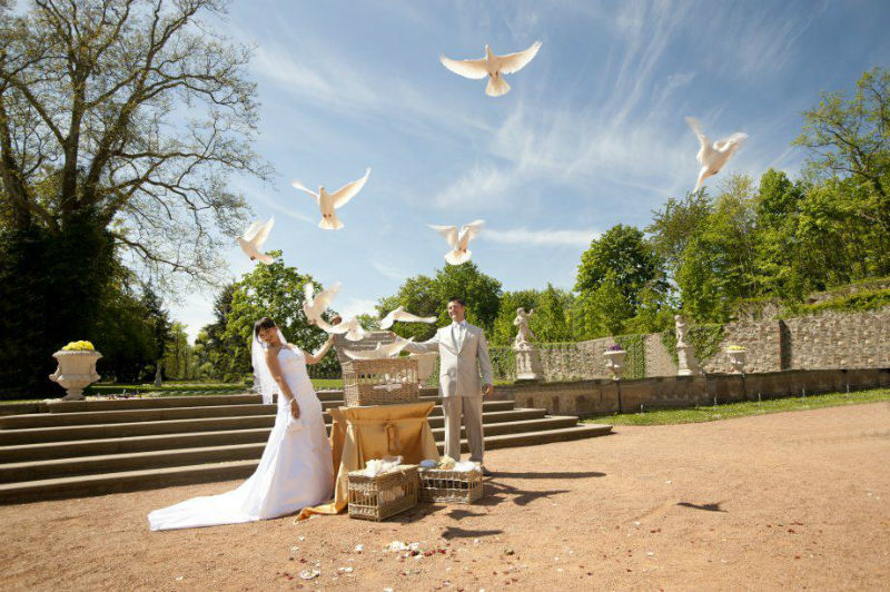 Beispiel: Hochzeitstaubenzeremonie, Foto: Ihre Hochzeitstauben.