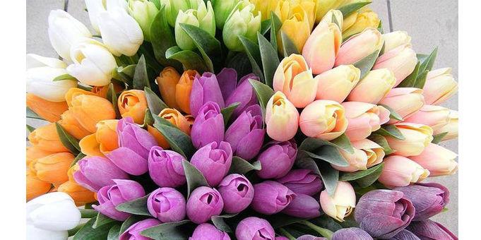 La Compañía de las Flores