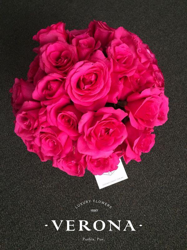 Area (rosas)