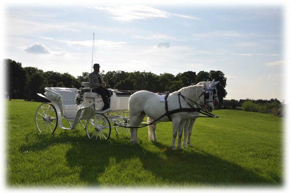 Beispiel: Traumhafte Hochzeitskutsche, Foto: Fiaker Wien.