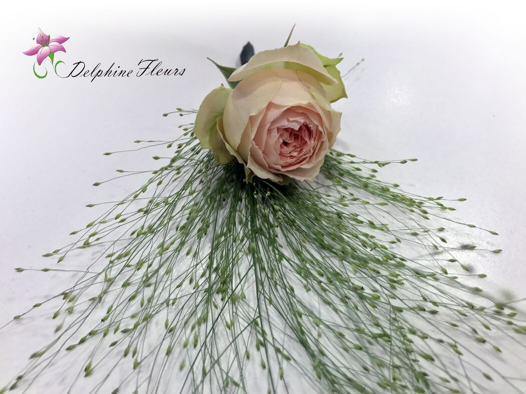 Delphine Fleurs