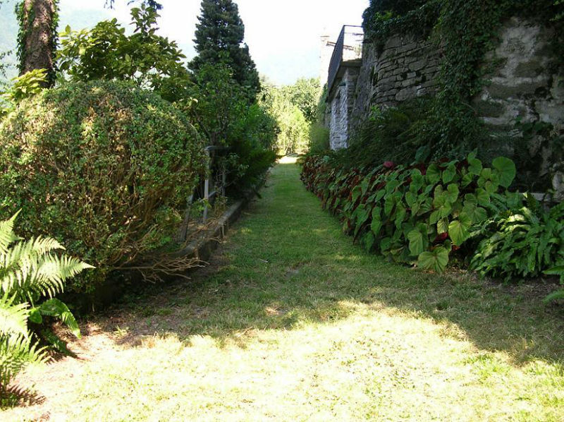 Viale del frutteto - Villa Nessi