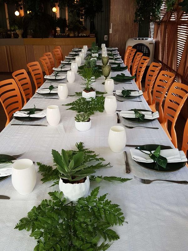 MIMO Restaurante
