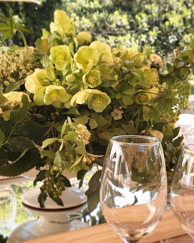 Bambú Flores