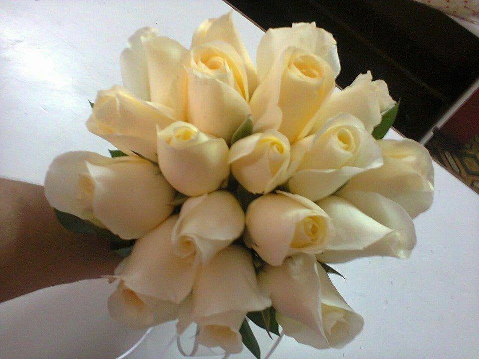Solo Rosas Ica