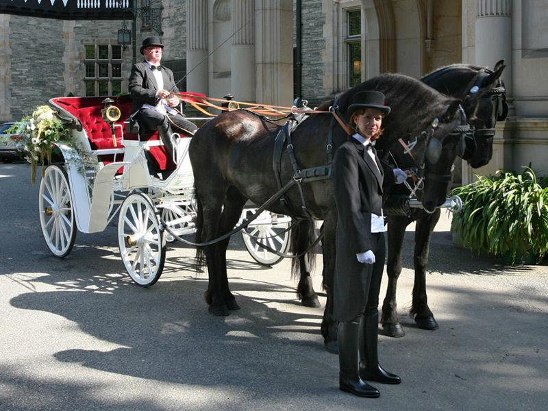 Beispiel: Weiße Hochzeitskutsche, Foto: Hochzeitskutschen Hessen.