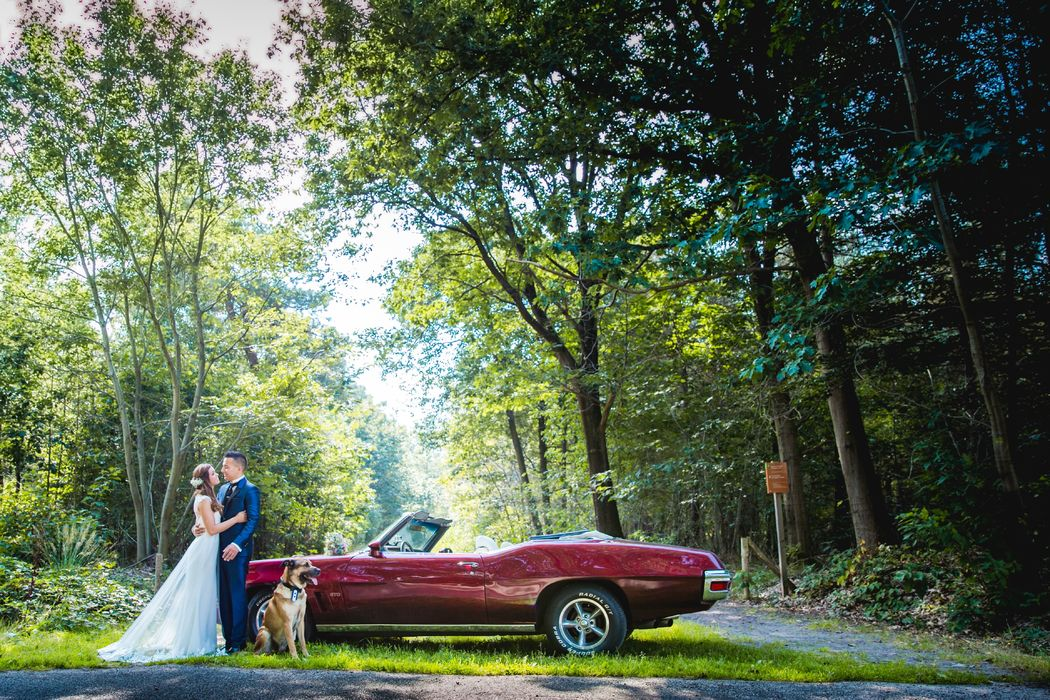 Hartstocht Weddings
