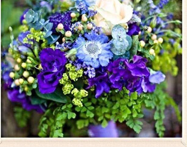 Flores Shantal