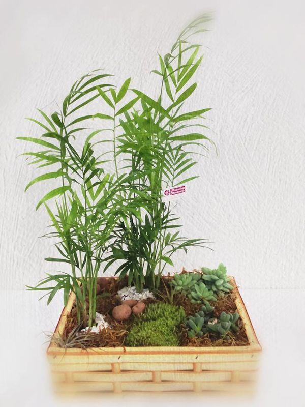 Floricultura Yamamoto