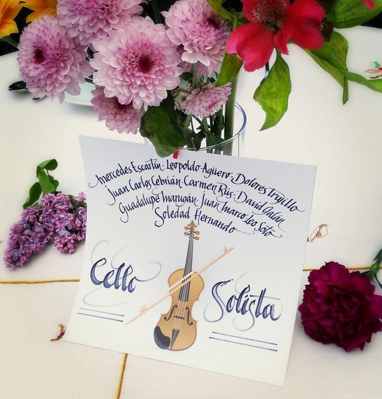 Protocolo cello