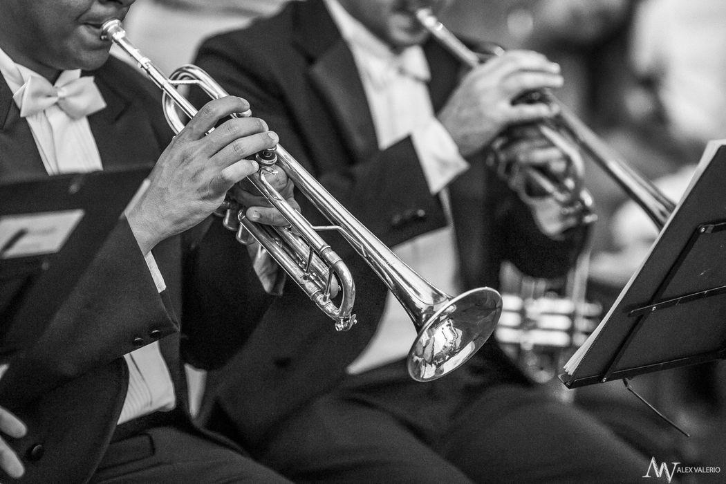 Trompetes - Clarins - Os Melhores Músicos no seu Evento