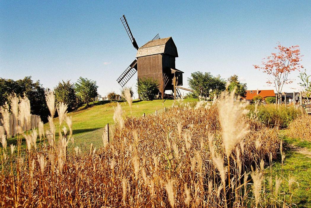 Beispiel: Umgebung - Windmühle, Foto: Lendelhaus - Historische Saftfabrik.
