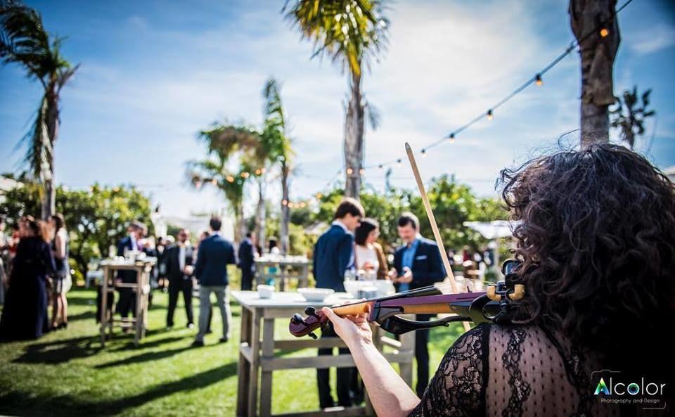 Violinista para tu boda