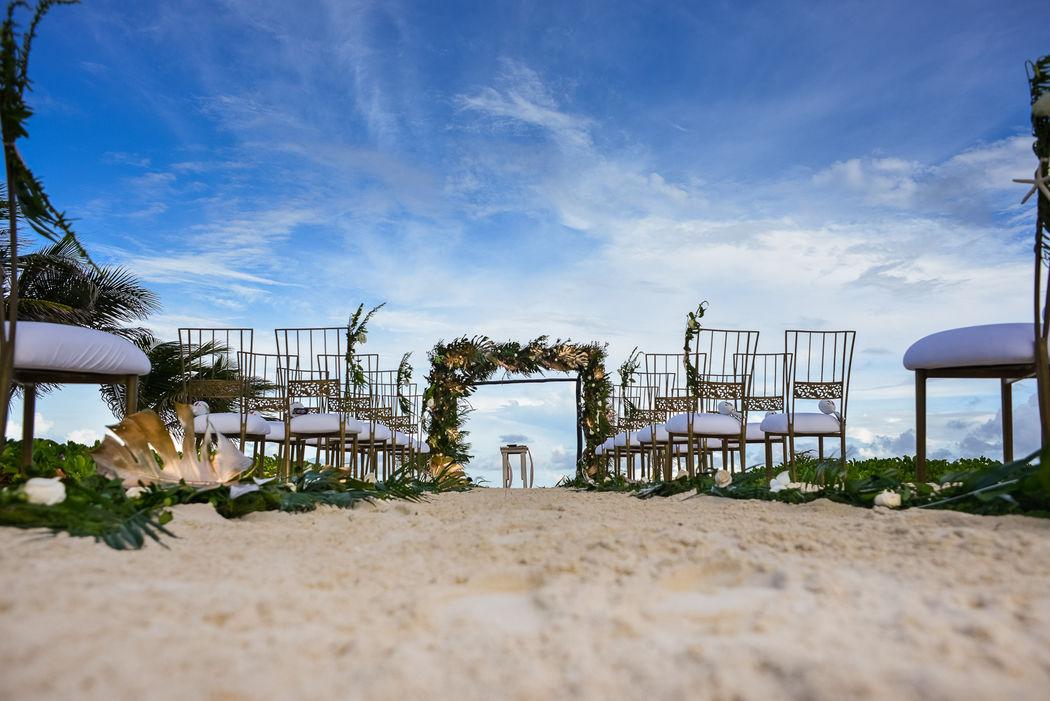The Reef Playacar