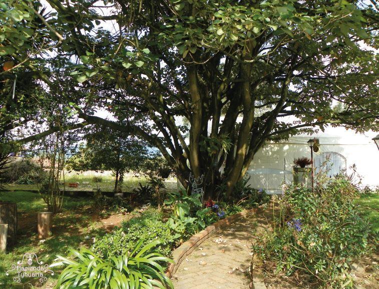 Hacienda Tyhuaira