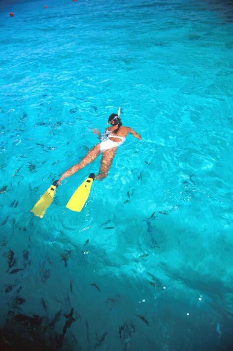 Si te gusta bucear o hacer snorkel, en Mexico encontraras muchos lugares para disfrutar