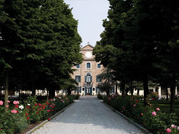 Viale d'entrata - Villa Maschio
