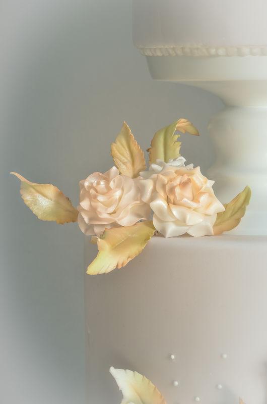 Jeannette Cake Blume