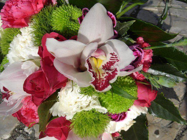 Foto: In Planta - Flores, Plantas e Interiores