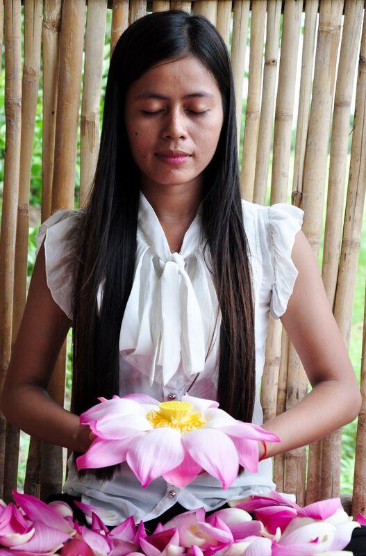 Lotus Paradis