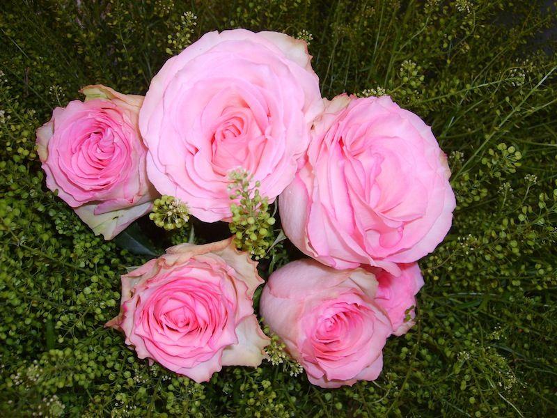 Beispiel: Rosentraum, Foto: Durch die Blume.