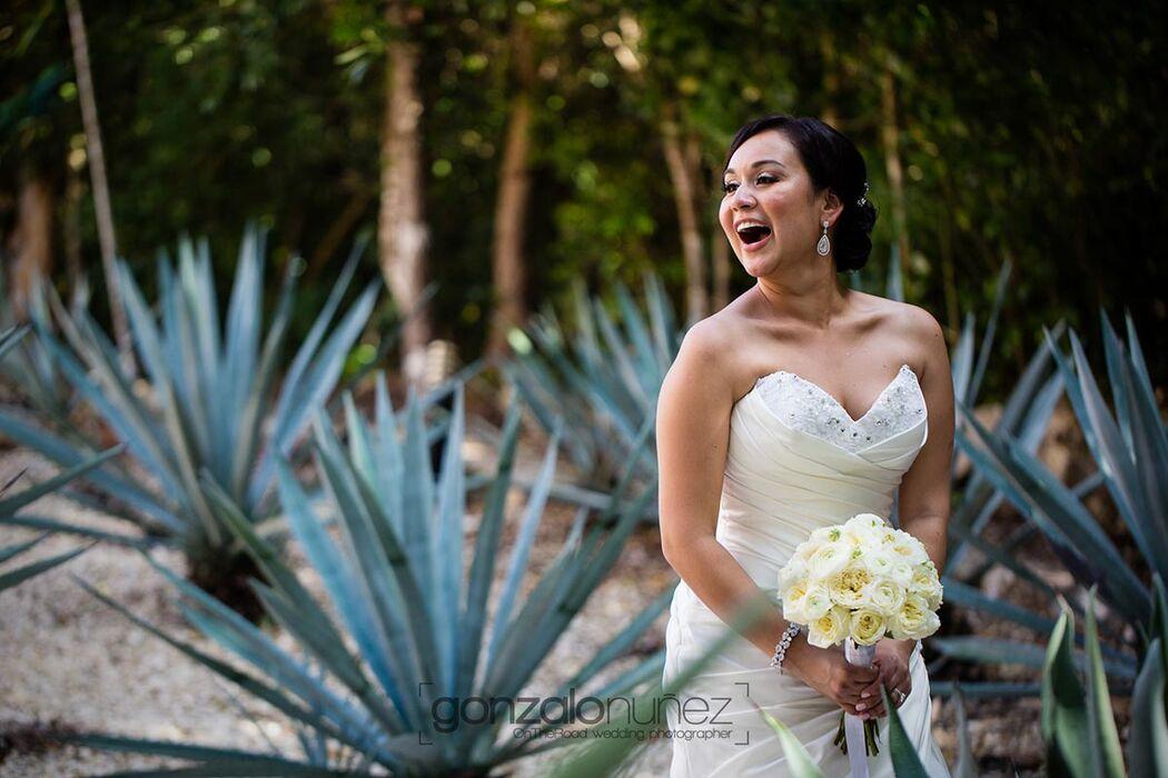 Dream Weddings Mexico