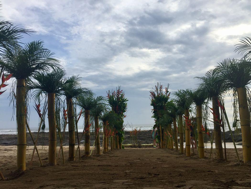 Damos el sí en la playa?