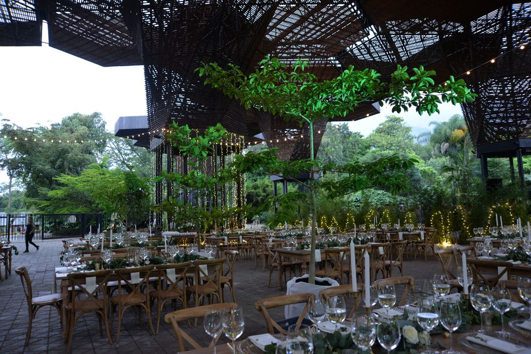 Jard n bot nico de medell n bodas for Bodas en el jardin botanico de medellin