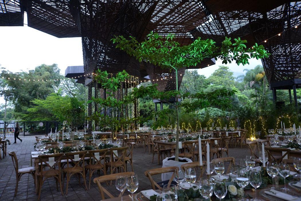 Jard n bot nico de medell n bodas for Bodas jardin botanico