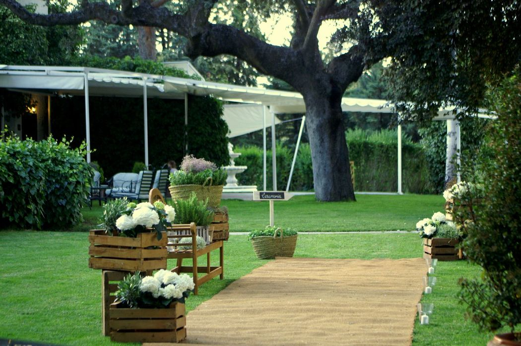 Encina centenaria en el maravilloso jardin
