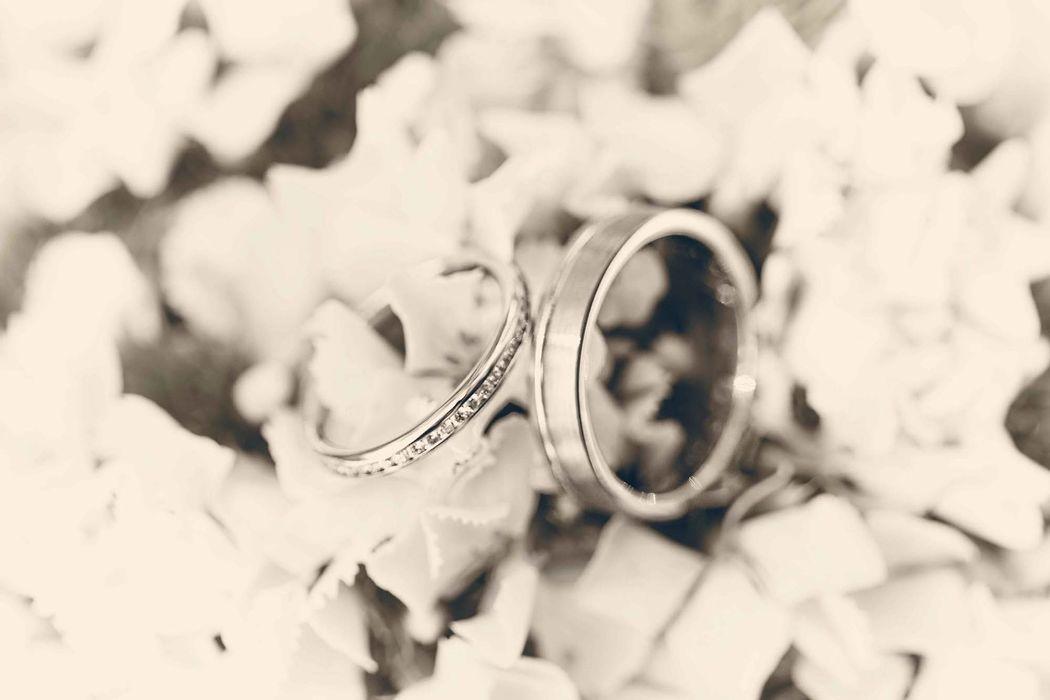Michael Photography - Hochzeitsfotograf