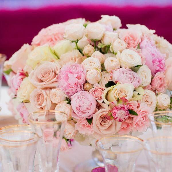 Royale Rose