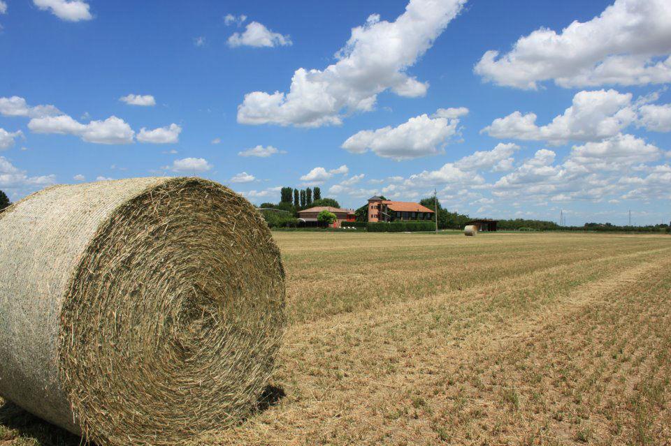 Agriturismo La Lupa