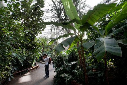 Beispiel: Pangung Impressionen, Foto: Pangung Tropengarten und Ryokan Seeterrassen.