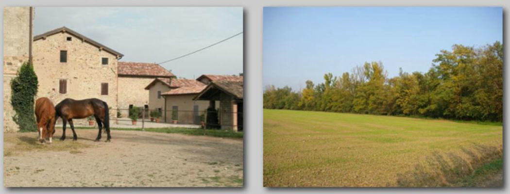 Borgo Antico Le Viole