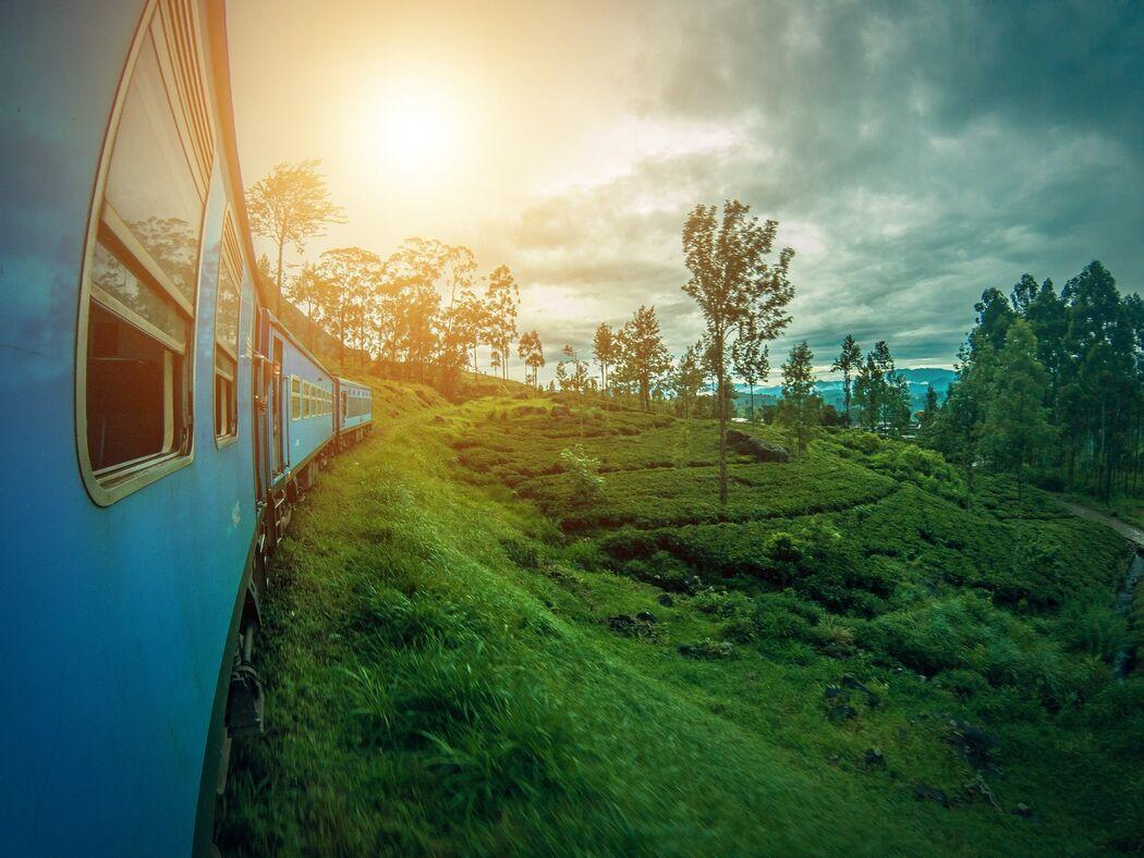 Kokoa travel