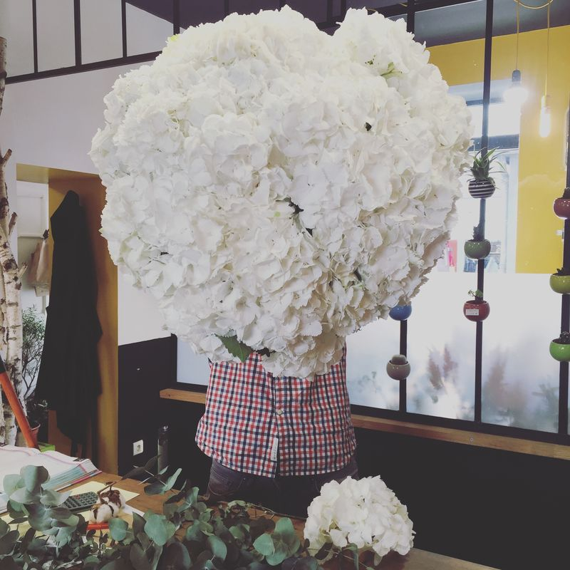 Grand bouquet d'hortensias blancs