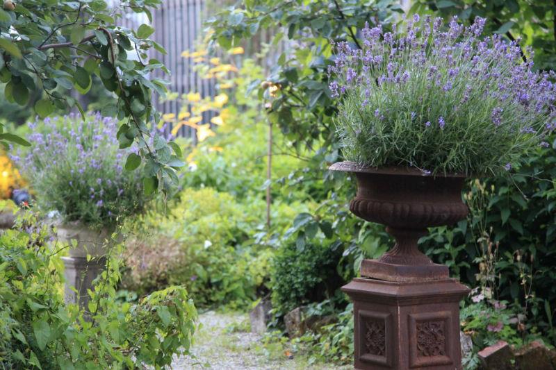 Beispiel: Romantischer Garten, Foto: Die Alte Gärtnerei.