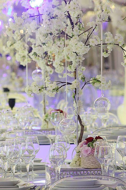 Orquidea Eventos