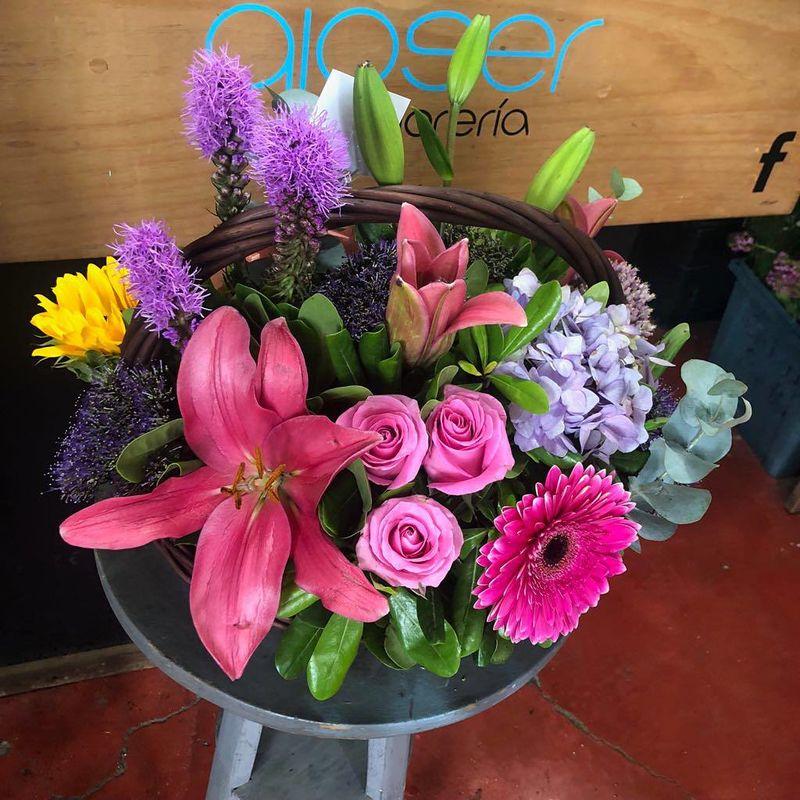 Florería Gioser