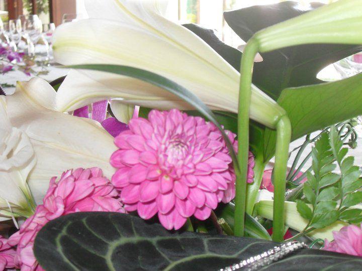 Mescla - Arte Floral