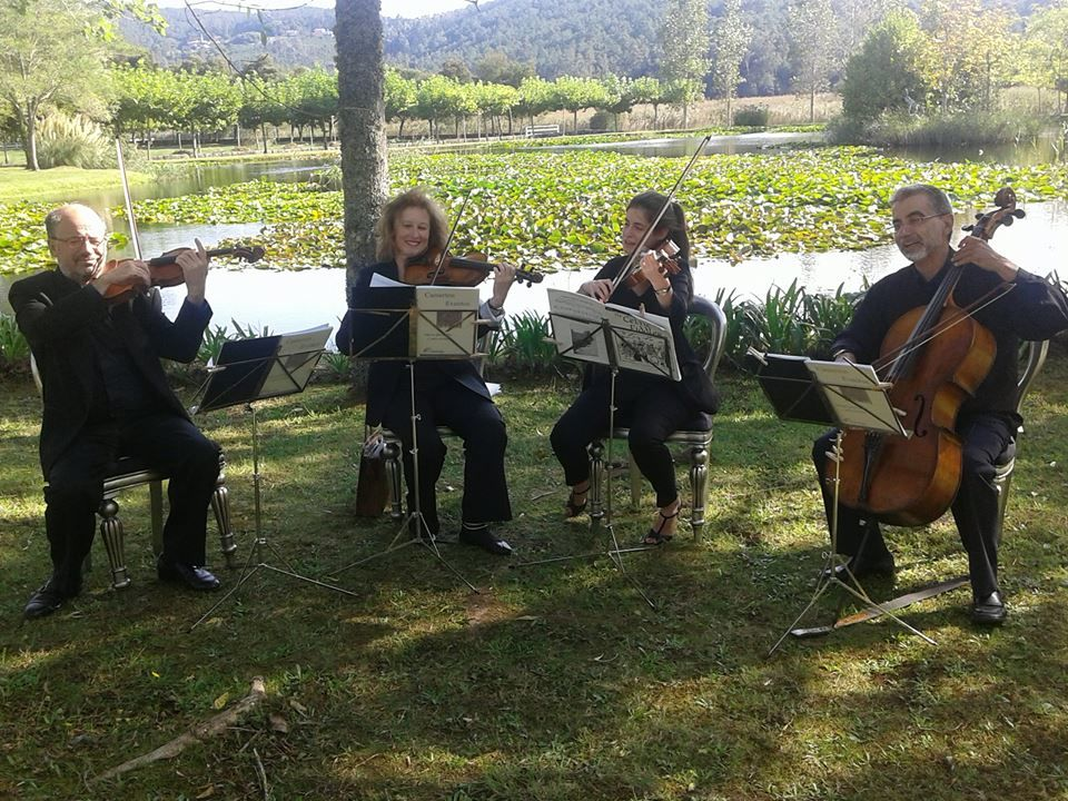 Camerton Eventos Musicales