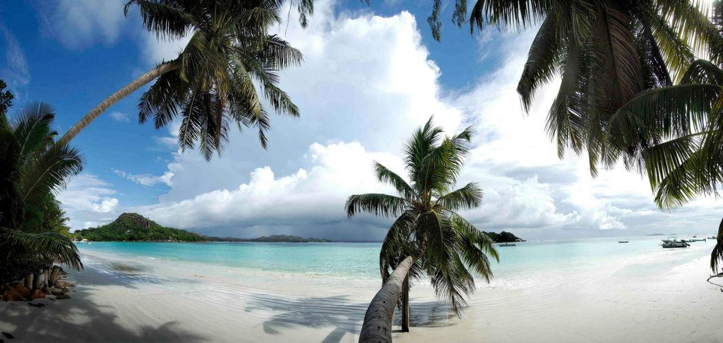Beispiel: Strand mit Palmen, Foto: Dream Tours.