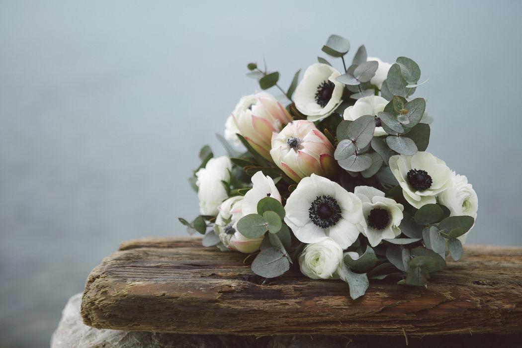 Monica Nisi flowers