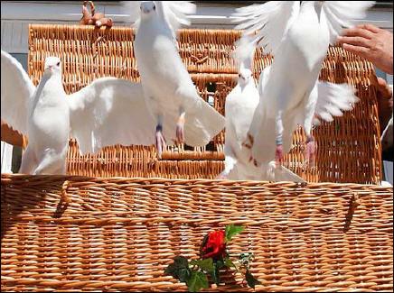Beispiel: Hochzeitstauben, Foto: Hotel Schöne Aussicht.