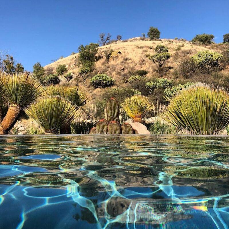 Live Aqua San Miguel de Allende