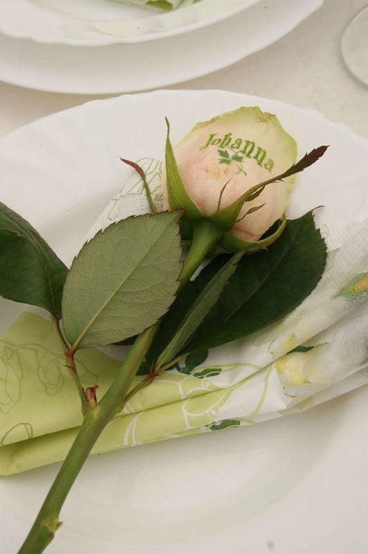 Sandra´s Blütenzauber