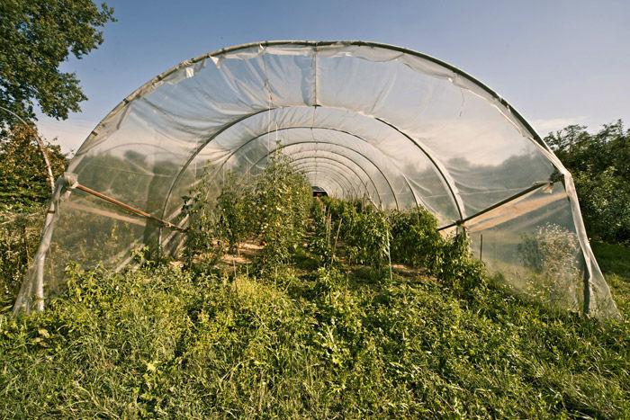 La Forestina Agriturismo